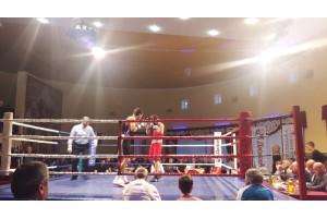 Компания «ДюбуА» в составе АСАБ приняла участие в организации вечера профессионального бокса